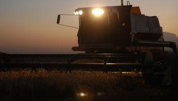 Qué harán los productores con la cosecha: los resultados de un relevamiento