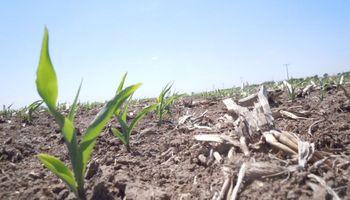 Las lluvias escasean y la falta de agua ya es peor que hace un año atrás