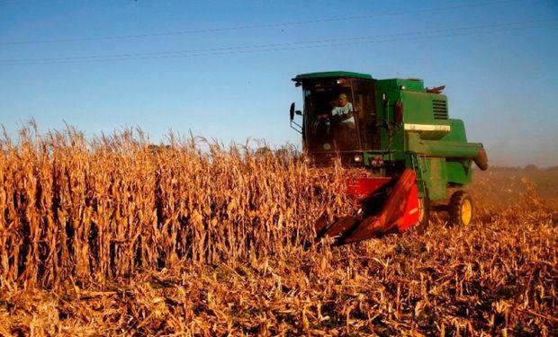 Continuaron creciendo las exportaciones agroindustriales de la Provincia de Buenos Aires en el primer trimestre del año.