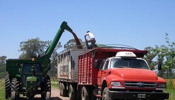 Ya se declararon exportaciones argentinas de trigo por casi 60 millones de dólares