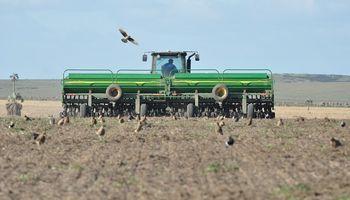 Santa Fe: las lluvias permitieron que comience la siembra de maíz temprano a ritmo sostenido