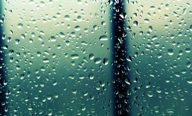 Llegaron las tan esperadas lluvias a la zona agrícola