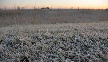 Junio cerrará con un ambiente frío y llegarán las primeras heladas del invierno