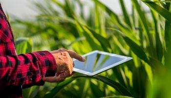 Lanzan un programa de preaceleración de soluciones agroalimentarias tecnológicas