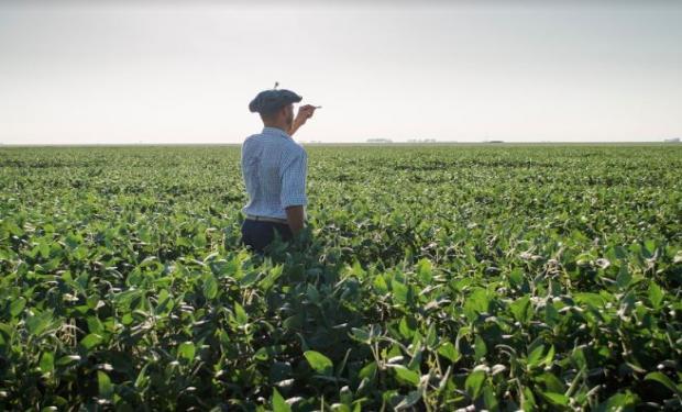 Las cuatro cadenas de los principales cultivos de la Argentina rechazaron el aumento de retenciones.