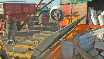 Tips para pensar en la fertilización de la soja