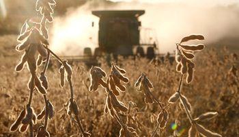 Cumbre agroindustrial en Rosario: las principales definiciones del encuentro