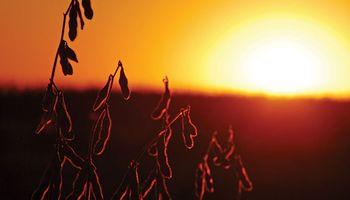 Las temperaturas siguen en ascenso y podría haber lluvias en la región sur pampeana