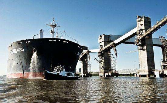 El senador santafesino Armando Traferri solicitó que se cumpla la ley provincial, que obliga a supervisar el estado sanitario de los tripulantes de lo barcos. Son más de 130 los muertos por esta enfermedad en el mundo.