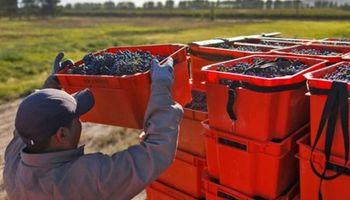 Economías regionales alertaron que se dificulta el pago de salarios por la falta de efectivo