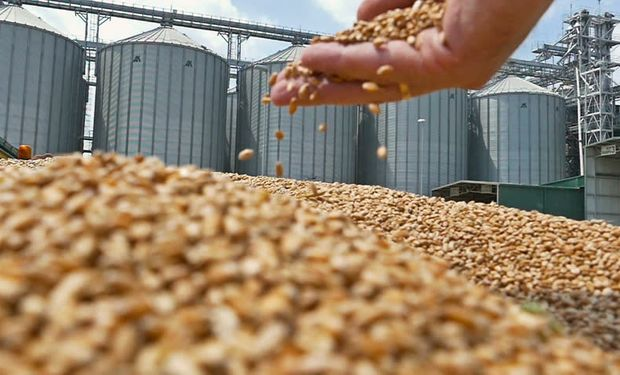 Pese a la cosecha récord los precios son menores y es importante recordar que los dólares no los liquidan los productores.