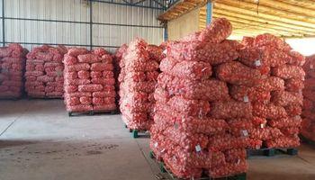 Mendoza exportará 5 contenedores de ajo a Taiwán