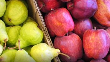 Peras y manzanas: dictamen para prorrogar por un año la emergencia