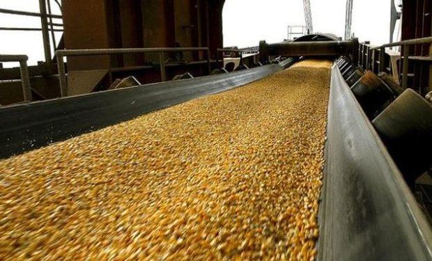 Los precios del maíz suben frente a los problemas en Estados Unidos.