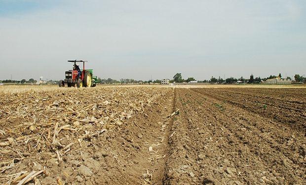 La participación del Estado en la renta agrícola es de 73,6%,