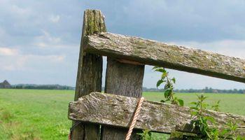 7 tips para planificar el año en las sociedades y empresas agropecuarias