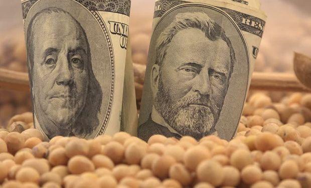 Soja y dólar: cuál es el valor real en el mercado local.