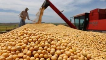 Acuerdo con Paraguay sobre granos
