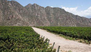 Costa se reunió con empresarios vitivinícolas y frutícolas