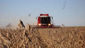 Por la cosecha récord entrarán al país US$ 128 millones por día