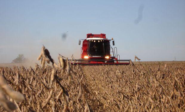 Considerando 7 cultivos líderes, hoy la expectativa está puesta en una producción de 132 millones de toneladas para el ciclo 18/19.