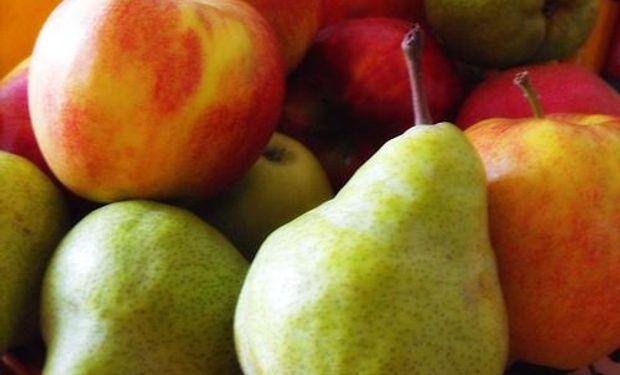 Crisis en el sector de producción de peras y manzanas.