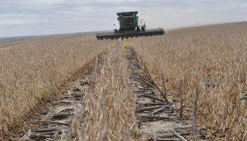 Estados Unidos: la cosecha de soja avanzó más rápido de lo que esperaba el mercado