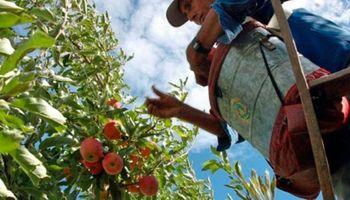Rentabilidad, impuestos y mano de obra: los temas que las economías regionales plantearán a Domínguez