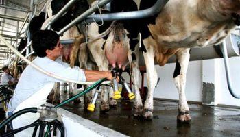 El precio promedio de la leche al tambero creció un 5,7 % en mayo