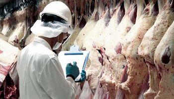 Carne argentina en China: la exportación creció un 115% durante el 2018