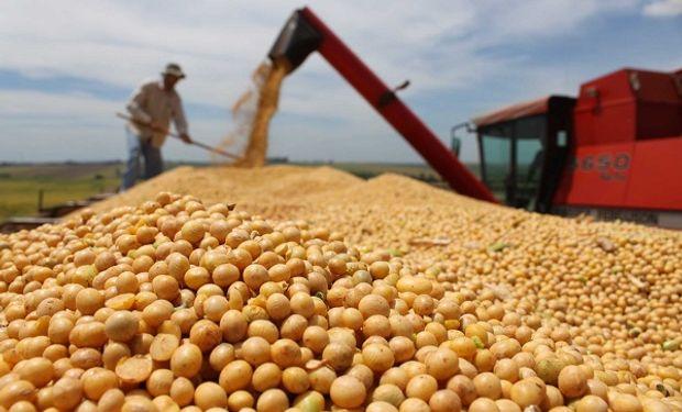 Coronavirus: 8 preguntas que el productor agropecuario de Buenos Aires debe conocer