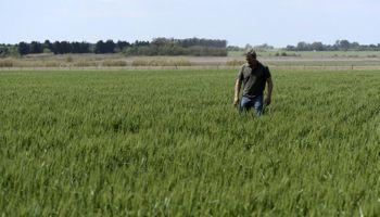 La confianza de los productores profundizó su caída y alcanzó un mínimo histórico