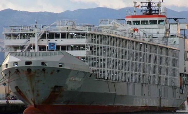 """Desapareció un barco con 43 marineros y casi 6.000 animales: """"Estas vacas nunca deberían haber estado en el mar"""""""