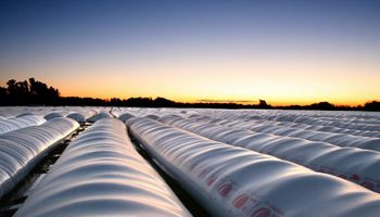 Plastar hace pie en Ameghino con soluciones en almacenamiento de forrajes y granos