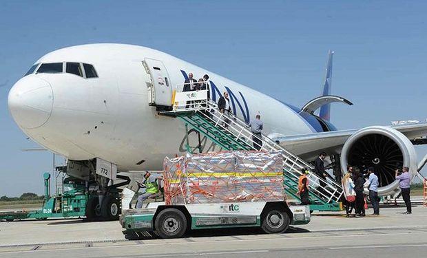 Arándanos:  hay incertidumbre en la exportación por la falta de vuelos comerciales