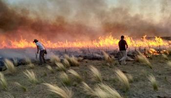 Instan a acelerar los tiempos de declaración de emergencia y desastre agropecuario