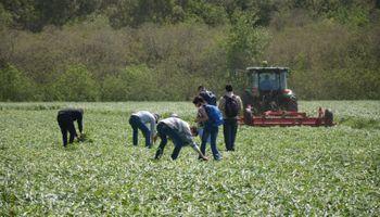 Ingenieros agrónomos podrán obtener la doble titulación con Francia