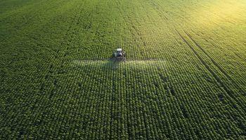 """""""Desacoplar producción de impacto ambiental"""": las claves frente a la mayor demanda de alimentos"""