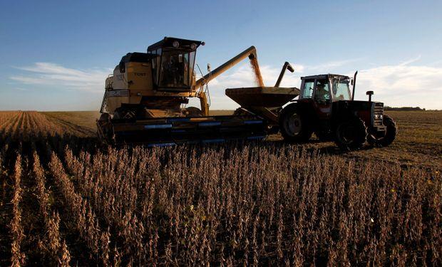 Día de la Agricultura y del Productor Agropecuario: por qué se celebra el 8 de septiembre