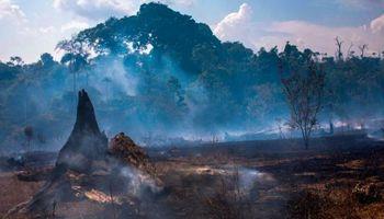 """Sierra: """"Los incendios sólo afectan el extremo sur de la Amazonia brasileña"""""""