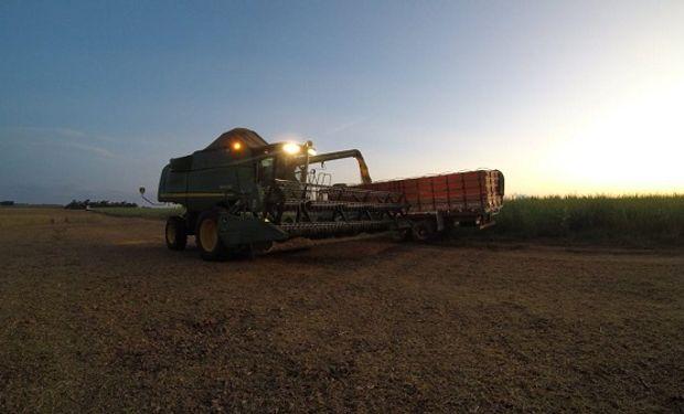AgRural: la cosecha de soja en las últimas cinco campañas presentaba en promedio un avance del 19% a esta altura del año.