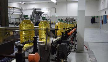 Mejora el perfil exportador del girasol argentino