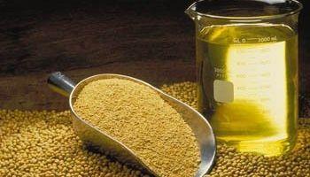 EEUU elevó el crushing de soja