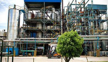 Nidera lanza al mercado aceites Legítimo y Cleo aptos para celíacos