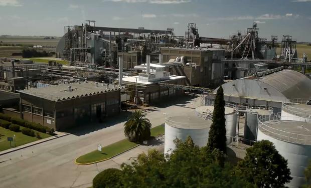La nueva terminal será vecina de los puertos de Dreyfus, Noble y Renova.