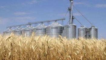 Pocas ventas de trigo uruguayo a Brasil
