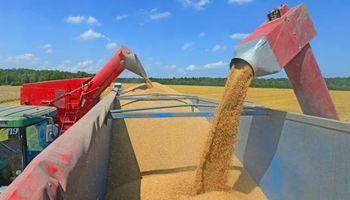 Preparan el sistema para corregir descalces cambiarios en operaciones de granos