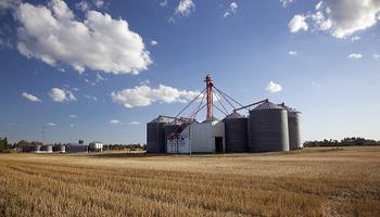 Sin documentos: detectaron 420 tn de soja sin registro