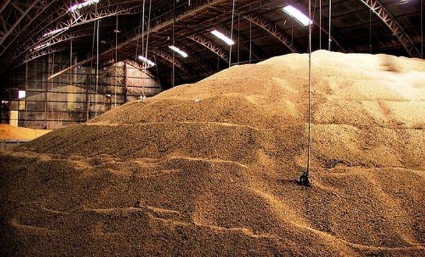 China almacenará maíz y soja doméstica