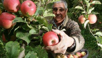 Ámbito de aplicación del régimen agrario: ¿qué, cómo y cuándo?